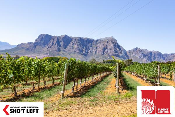 A view of vineyards and a mountain range in South Africa, which can be visited with an affordable Homegrown holiday package from Flight Centre.